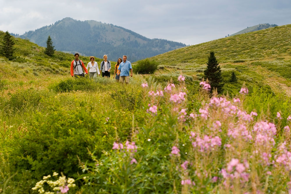 Family Hiking in Summer Alpine Valley