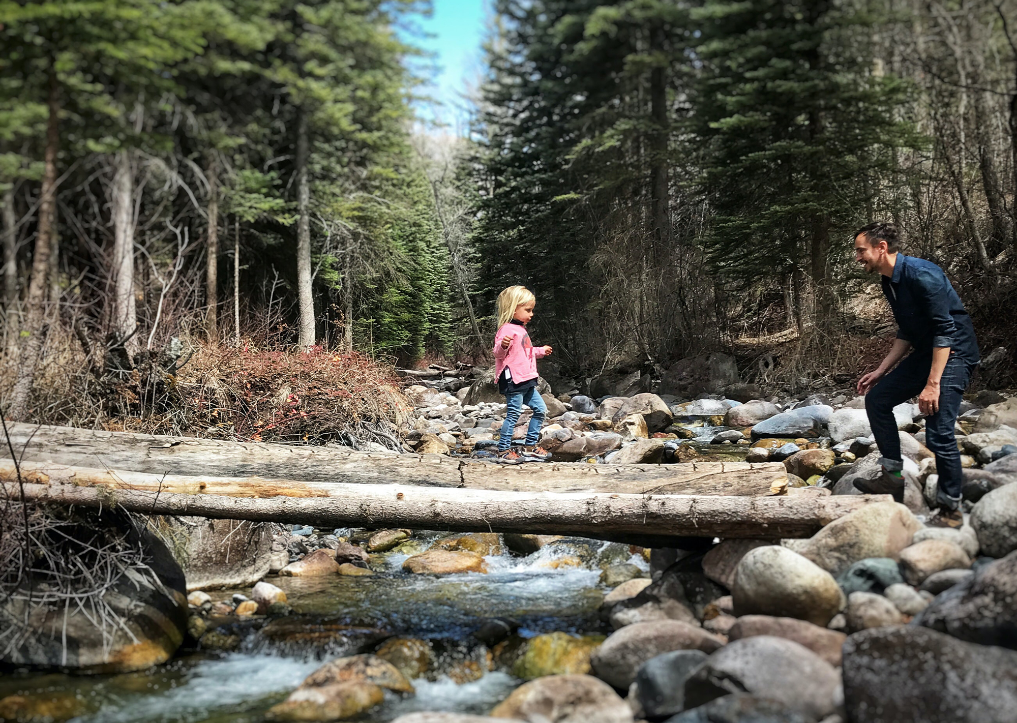 Man helping child over stream in the woods