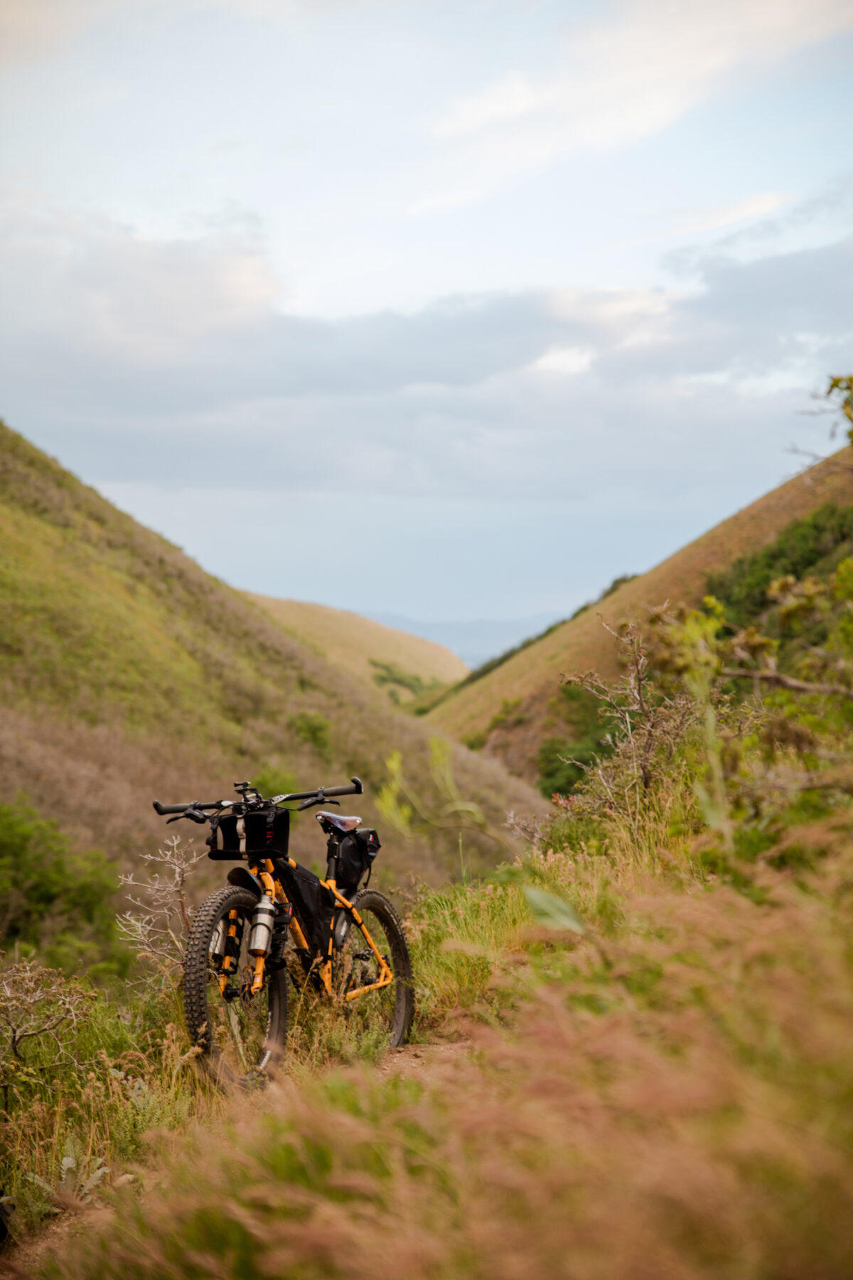 mountain bike on grassy trail in the hills