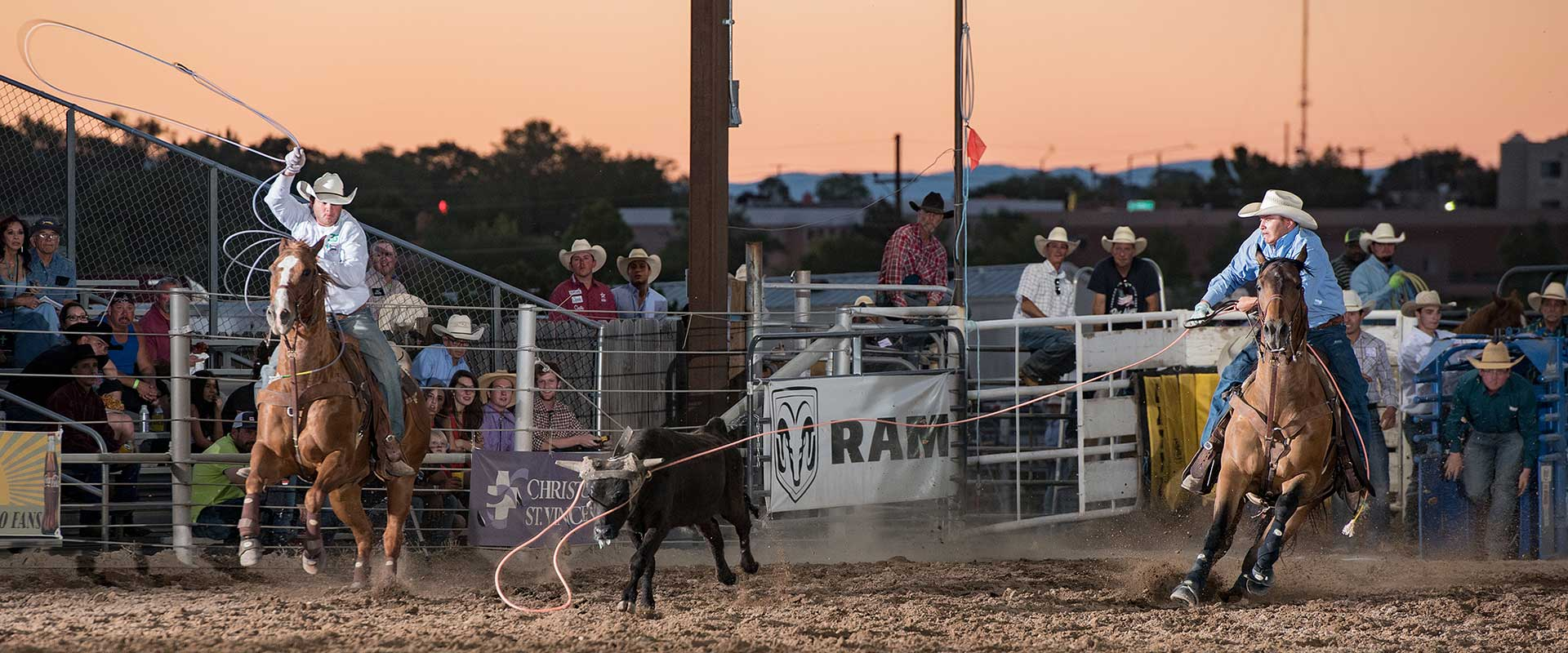 Cattle roping at the Rodeo de Santa Fe